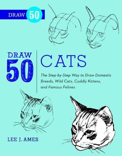 50 draw - 2