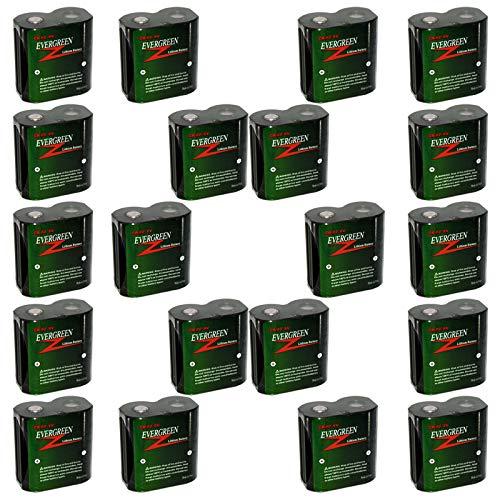 20pcs Evergreen CRP2 Photo Lithium Batteries Replaces K223LA-1 PC223A PRCRP2