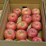 山形産 サンつがる りんご 5kg 約12~20玉前後 訳あり ご家庭用