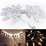Accmor 16.4ft LED Photo Clip String Lights - USB Lights with 20 Photo Clip ...