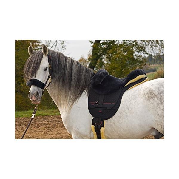 Selas para cavalos
