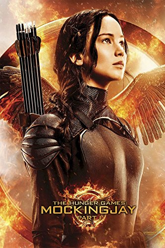 Fit You New The Hunger Games 3 Movie Silk Poster Katniss Everdeen Jennifer Lawrence 17