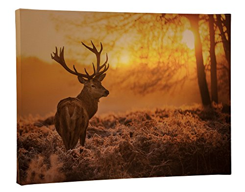 Light Up Canvas by Clever Creations   Deer in Sunrise Lit Field Wall Art with Bright Color Changing LEDs   16