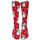 XIdan-die Casual Athletic Socks Christmas Red Raccoons Tube Knee High Classic Sport Sock For Women Men