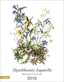 alpenblumen aquarelle kalender 2018 9788868392307 amazon. Black Bedroom Furniture Sets. Home Design Ideas
