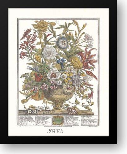 Amazon Twelve Months Of Flowers 1730september 14x16 Framed