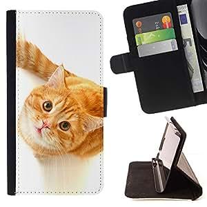 Momo Phone Case / Flip Funda de Cuero Case Cover - Lindo Gato curioso de Orange - Samsung Galaxy E5 E500