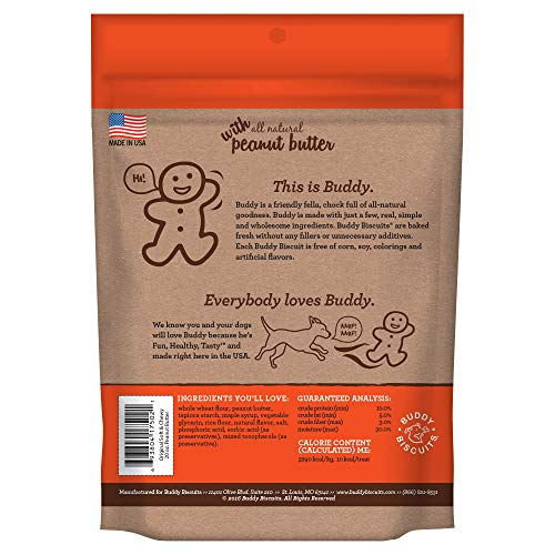 Buddy Biscuits Soft & Chewy Healthy Dog Treats with Peanut Butter - 20 oz.