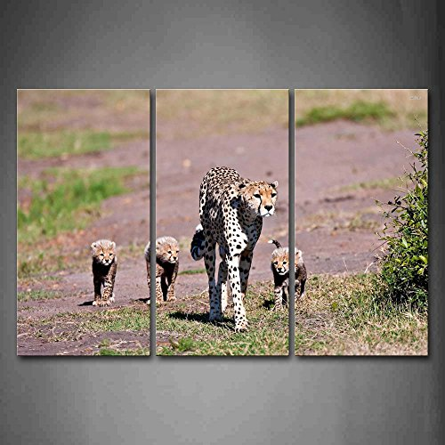 Cheetah Cub Knife - First Wall Art - Mother Cheetah And Cubs Walk On Grass Plant Wall Art Painting The Picture Print On Canvas Animal Pictures For Home Decor Decoration Gift