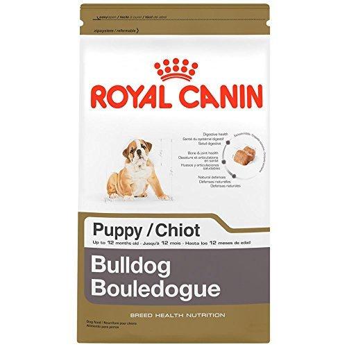 ROYAL CANIN BREED HEALTH NUTRITION Bulldog Puppy dry dog food, 6-Pound by Royal Canin