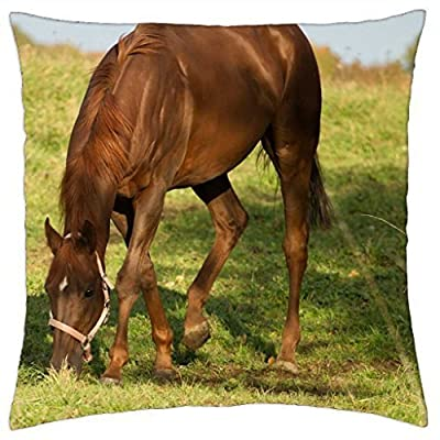 SKBFG112 Horse on The Meadow - Throw Pillow Cover Case 18 X 18 Inches / 45 by 45 cm