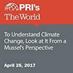 To Understand Climate Change, Look at It From a Mussel's Perspective | Carolyn Beeler