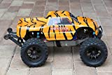 Tiger Body for Stampede / Bigfoot 1/10 Scale 3617 Cover Shell Truck (Body Only, Truck Not Included)