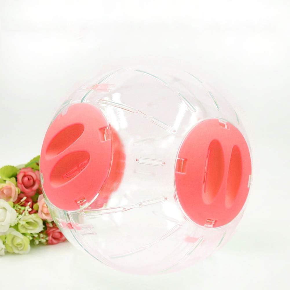 AKDSteel - Bola de Cristal para hámster (20 cm), diseño de Rata ...