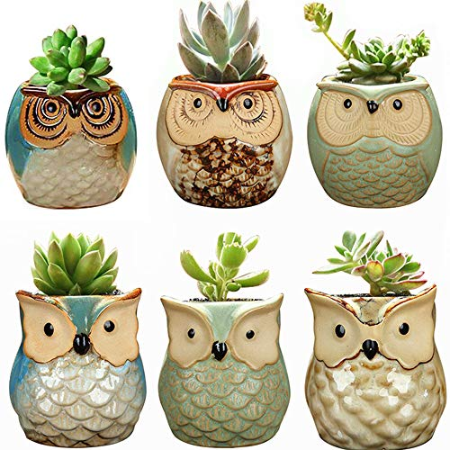 (YLINGSU 2.5 Inch Owl Gifts Succulent Plant Pots Ceramic Set Cactus Plant Pot Flower Pot Container Planter Bonsai Pots with A Hole Perfect Gift Idea 6 in Set)