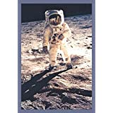 ArtParisienne Buzz Aldrin Apollo 11 Man on The Moon NASA 16x24-inch Wall Decal