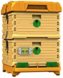 Apimaye 10 Frame Langstroth size Insulated Bee Hive Set [No Frames included]