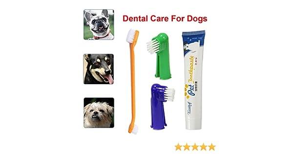 Sinwo - Cepillo Dental para Cepillo de Dientes de Perro, Kit de ...