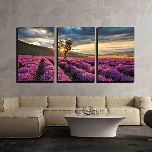 Stunning Landscape with Lavender Field at Sunrise x3 Panels