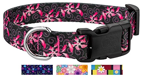 Dog Swirls Designer Collar (Country Brook Petz | Deluxe Pink Honeysuckle Breeze Dog Collar - Large)