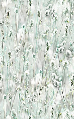 DC Fix 334-0029 Wildflowers Window Film by DC Fix