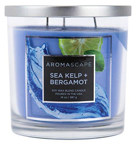 Aromascape 3-Wick Scented Jar Candle, Sea Kelp & Bergamot