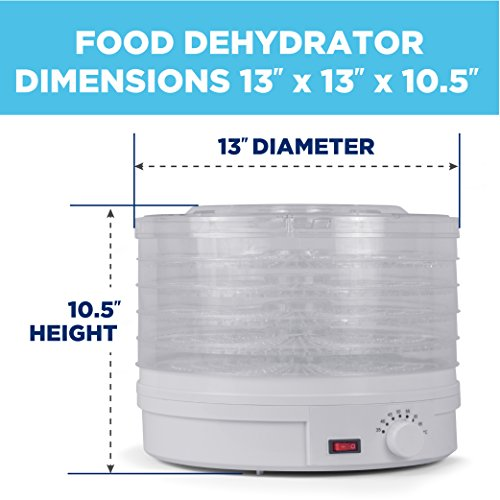 Westinghouse Food Dehydrator, Beef Jerky Maker, Food Preservation Device, Food Dehydration Machine, Dried Fruits and Vegetables Maker, Countertop Small Kitchen Appliance, WFD101W - smallkitchenideas.us