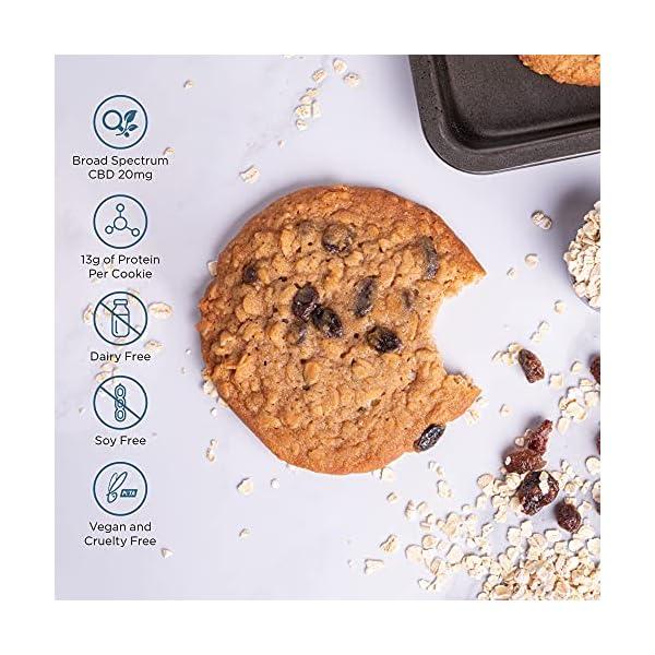 CBDfx Oatmeal Raisin Vegan Protein Cookie 12 Pack – 20mg CBD Oil (12 Cookie Pack)