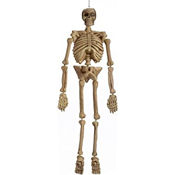 realistic hanging skeleton 5ft life size halloween decoration prop - Skeleton Halloween Decoration