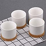 Succulent Pots, ZOUTOG White Mini 3.15 inch Ceramic Flower Planter Pot with Bamboo Tray, Pack of 6 - Plants Not Included