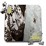Danita Delimont - Sport - View from above, Ice climber ascending at Ouray Ice Park, Colorado - 10x10 Inch Puzzle (pzl_230415_2)