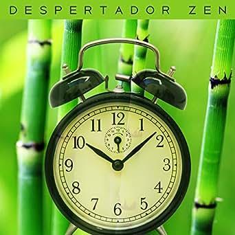 Despertador Zen: Música Instrumental Suave para Despertar y ...