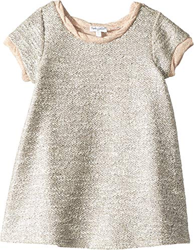 (Splendid Little Girls' Kids Short Sleeve Dress, Lurex Pale Dogwood 4/5)