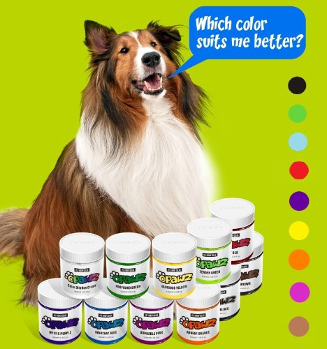 DOG HAIR DYE GEL – New Bright, Fun Shade, Semi-permanent, completely non-toxic and safe