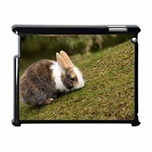 Customized Back Cover Case For iPad 2 3 4 Hardshell Case, Black Back Cover Design Rabbit Personalized Unique Case For iPad 2