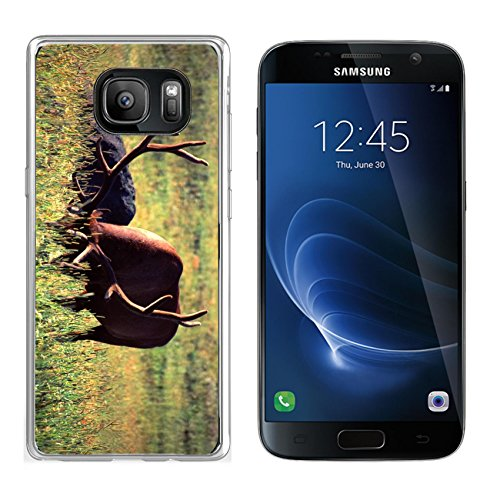 MSD Samsung Galaxy S7 Clear case Soft TPU Rubber Silicone Bumper Snap Cases Elk Cervus canadensis in a meadow under morning sunlight in Yellowstone National Park Wyoming Image - Park Fit Meadows