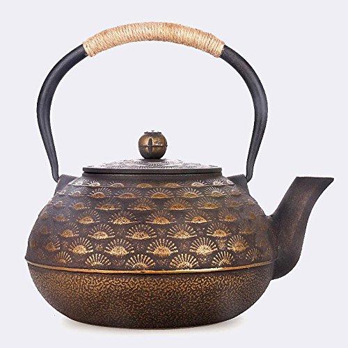 Japan Cast Iron teapot Kung Fu Teapot Uncoated Iron Handle Iron Cover Retro Crafts 2L Ahui