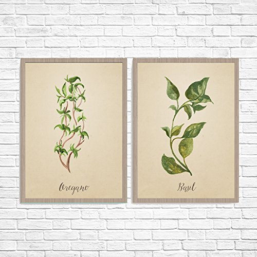 Set of 2 Old Paper Look Italian Herbs Oregano and Basil Kitchen Unframed Prints