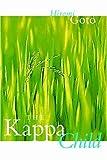 The Kappa Child, Hiromi Goto, 0889952280