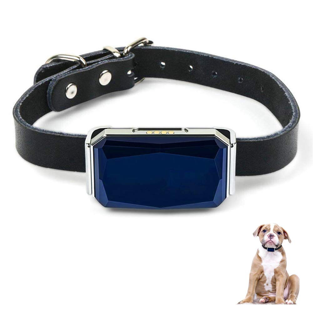 Pet GPS Tracker, IP67 Waterproof Pet GPS Locator for Dogs Cats Cattle, Dog Positioning Track Device