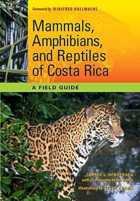 Mammals, Amphibians, and Reptiles of Costa Rica: A Field Guide: 66 Corrie Herring Hooks Series: Amazon.es: Henderson, Carrol L., Adams, Steve: Libros en idiomas extranjeros
