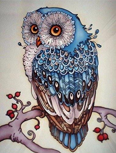 AIRDEA DIY 5D Diamond Painting Kit, Full Diamond Owl Embroidery Rhinestone Cross Stitch Arts Craft Supply for Home Wall Decor