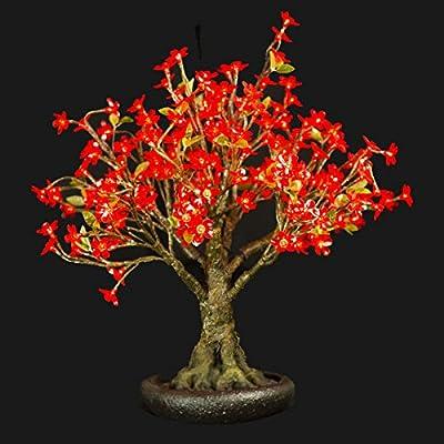 Bright Baum LED Light Artificial Medium Bonsai Tree, 2.4-Feet, Red LINDEN
