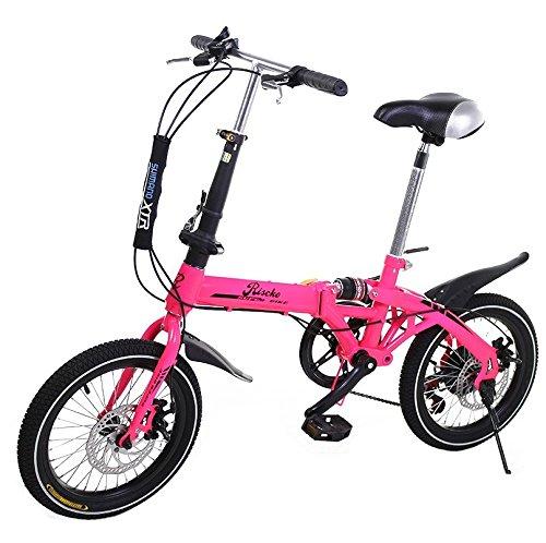 Bicicleta plegable grupo k2