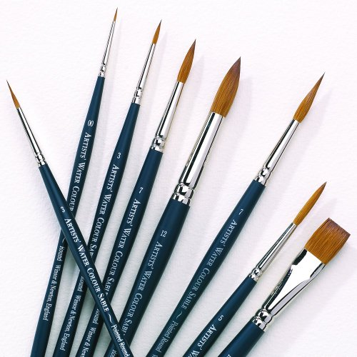 Winsor Newton Professional Water Colour product image