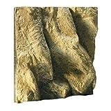 Exo Terra - Fondo, 30,48 x 30,48 cm (12 x 12 pulg.)