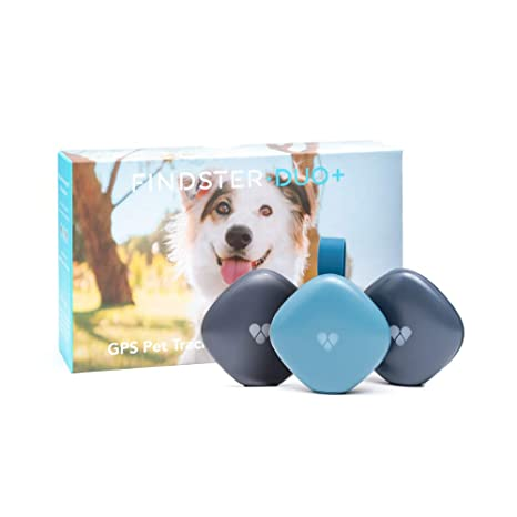 Findster Duo+ Pet Tracker - Collar de localización GPS para ...