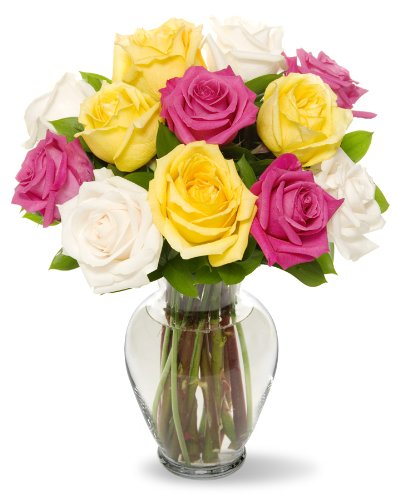 Benchmark Bouquets Dozen Vibrant Roses, With (Deliver Flowers)
