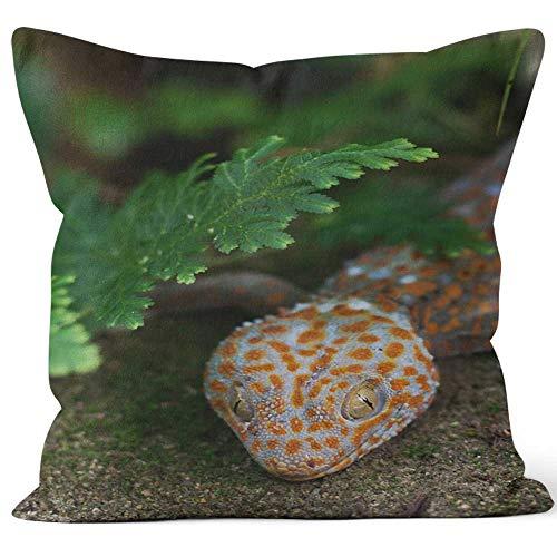 (Nine City Tokay Gecko (Gekko Gecko) Throw Pillow Cushion Cover,HD Printing Decorative Square Accent Pillow Case,18
