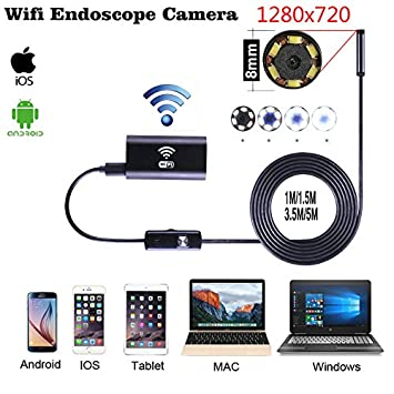 Wireless Endoscope, Sinstar WiFi Borescope with 8mm Lens 6 LED Waterproof  Endoscope Inspection Camera Endoscopic Tube and Software for iPhone